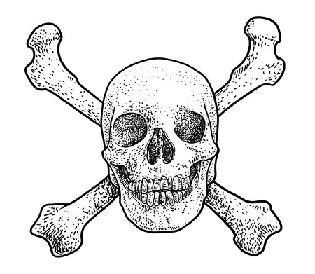 Skull with two cross bones illustration, drawing, engraving, ink, line art, vector
