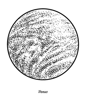 Planet Venus illustration engraving ink line art vector Illustration