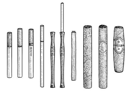 Cigarette, cigar illustration, engraving, ink, line art, vector