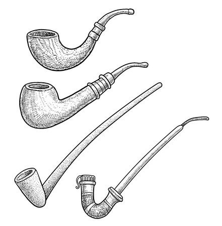 Tobacco pipes illustration drawing engraving ink line art vector