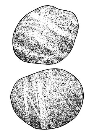 Rock pebble illustration drawing engraving ink line art vector Imagens - 121653610