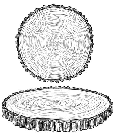 Cut tree illustration, drawing, engraving, ink, line art, vector Ilustracja
