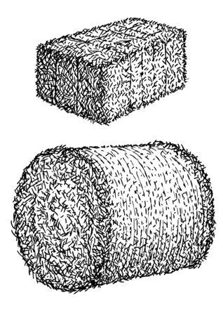 Foin, illustration de balle, dessin, gravure, encre, dessin au trait, vecteur