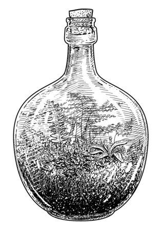 Florarium, terrarium illustration, drawing, engraving, ink, line art, vector Imagens - 147980786