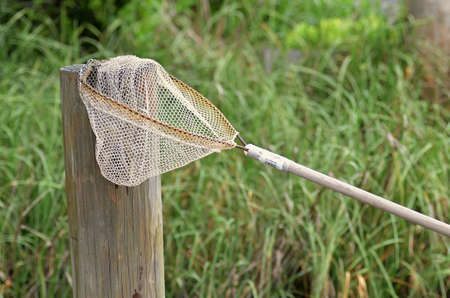 A worn fish net resting on a dock piling with tall grass behind it.