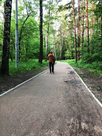 Elderly person in the park lead an active life. Nordic walking. Person prolong life. Seniors walk in the park with sticks for walking. active walks in the forest