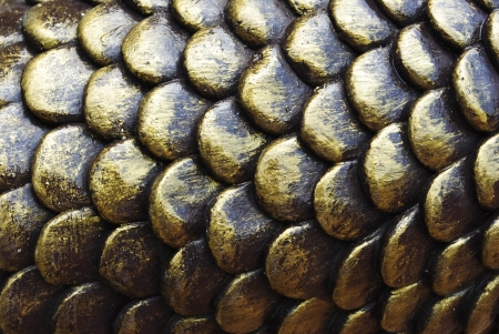 Texture Of Fish Scales Stock Photo - 13624186