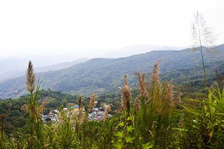 From the peak of Doi Suthep, Chiang Mai, Thailand. photo