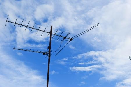 the antennae: Television Antennae
