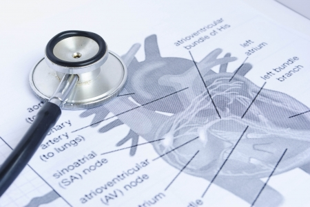 stethoscoop op een foto van een menselijk hart Stockfoto