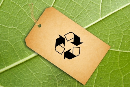 Sale Tag On a green leaf as background Stock Photo - 15158343