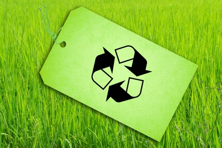 Sale Tag On Green rice fields Stock Photo - 15229931