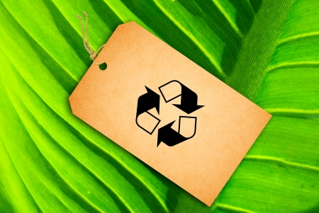 Sale Tag on a green leaf as background photo
