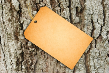 Sale Tag on bark of tree texture Stock Photo - 15333030