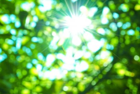 Groene natuurlijke vervaging