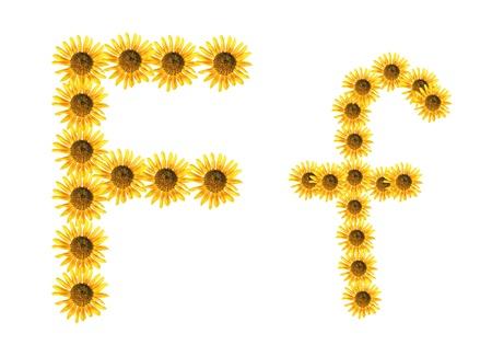xyz: Font flower