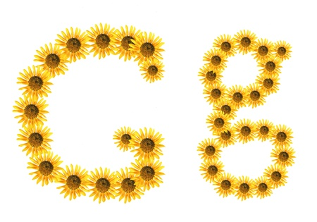 Font flower Stock Photo - 18836664