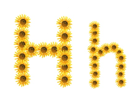 Font flower Stock Photo - 18836536