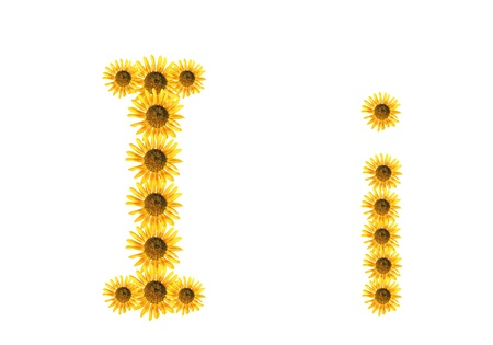 Font flower Stock Photo - 18836387