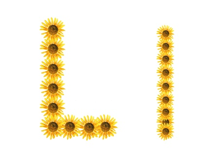 Font flower Stock Photo - 18836392