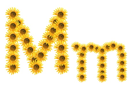 Font flower Stock Photo - 18836671