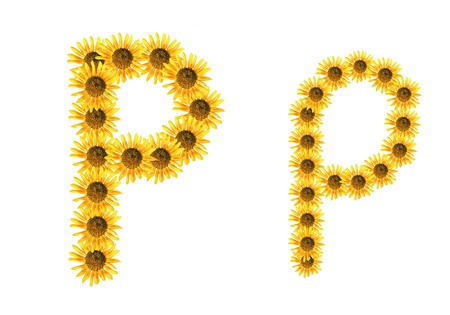 Font flower Stock Photo - 18836492