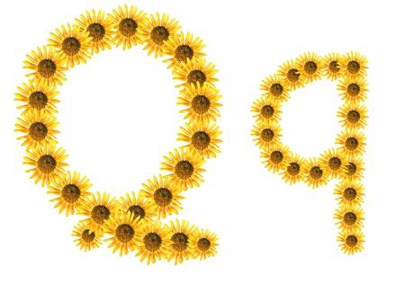 Font flower Stock Photo - 18836666