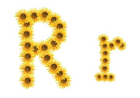 Font flower Stock Photo - 18836524