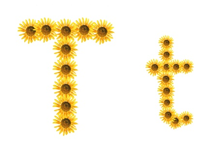 Font flower Stock Photo - 18836405