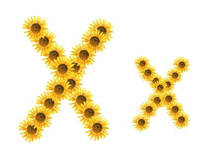 Font flower Stock Photo - 18836482