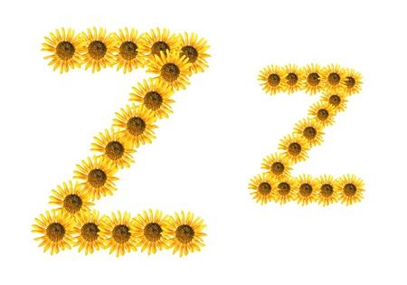 Font flower Stock Photo - 18836528