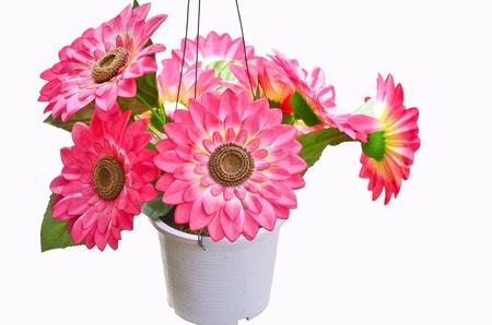 Artificial flowers pots Stock Photo - 19500846