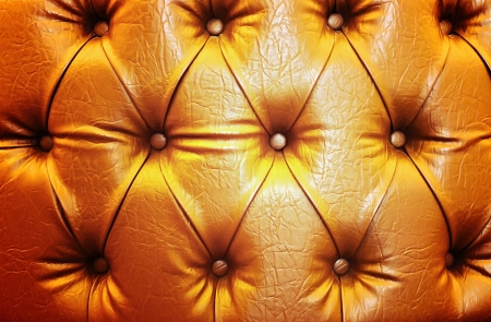 genuine leather upholstery photo