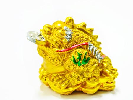 Frog,souvenir, coins, money,Riches symbol photo