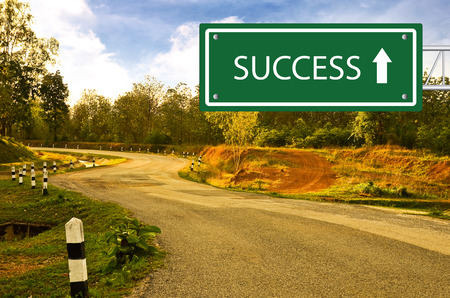 Way to Succcess photo
