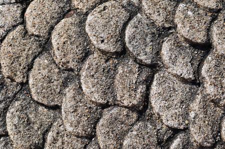 escamas de pez: La textura de escamas de pescado