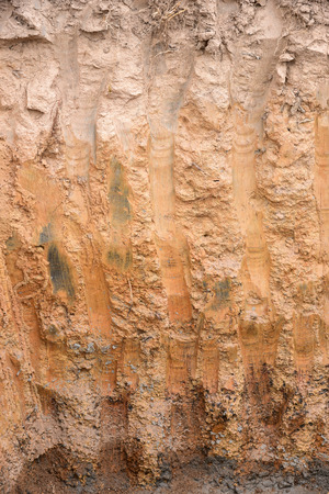 soil texture: Cut of soil with different layers