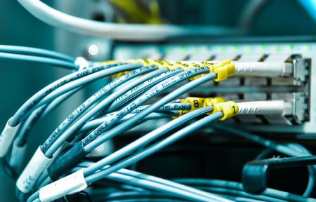 red informatica: cable de red en el centro de datos Foto de archivo