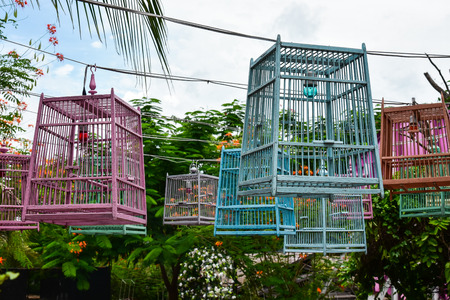 Colorful Birds cages