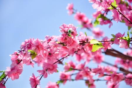 Artificial Sakura