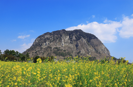 Spring landscape of Sanbangsan in Jeju Foto de archivo