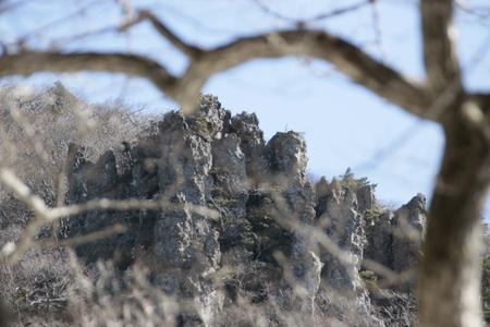 Winter scenery of Halla Mountain in Jeju