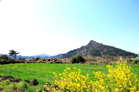It is a beautiful scenery of Jeju Bajangji Oumn (Dansan)
