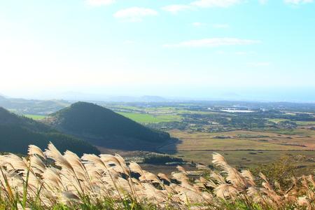 It is a beautiful rural scenery of Jeju.