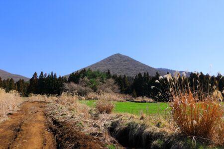 It is a beautiful scenery of Jeju rural green.