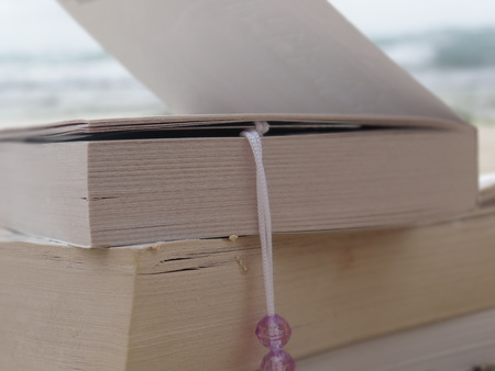 Books on beach