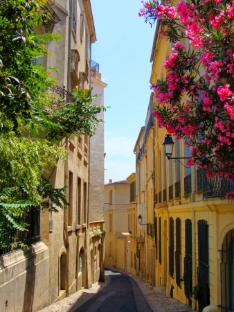 cobblestone: Flowers lining a narrow street in old Montpellier, France Stock Photo