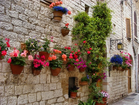 the tuscan: Colorful flowers lining a medieval stone wall in Italy