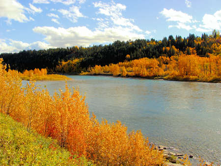 Colorful fall foliage along a river, Calgary, Canada Stock Photo - 10331543