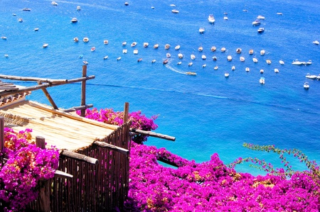 bougainvillea flowers: Flower draped terrace in Positano on the Amalfi Coast of Italy